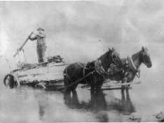 horse and wagon collecting water from the Columbia River for delivery around 1912