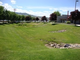 Grassy stormwater pond in Olds Station